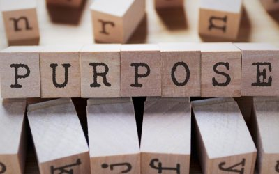 The power of Purpose in navigating these uncertain times